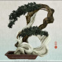 Yoriko Yoshida. workbook/Asialphabet - B [bonsai]
