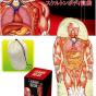Спальный мешок Анатомический