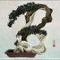 Yoriko Yoshida. workbook/Asialphabet - B [bonsai]