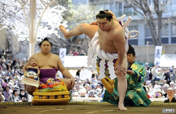 Традиционные и современные виды спорта в Японии