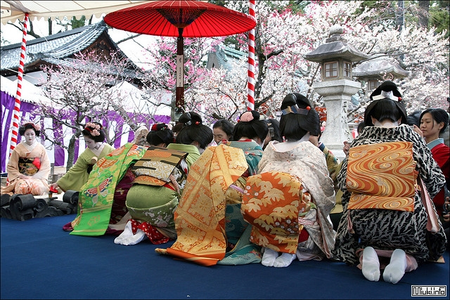 Японский этикет, как себя вести в Японии, как вести себя с японцами