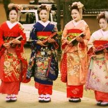 Kimono +