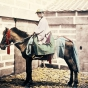 Самурай конного эскорта