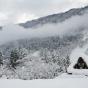Обычный зимний пейзаж Японии