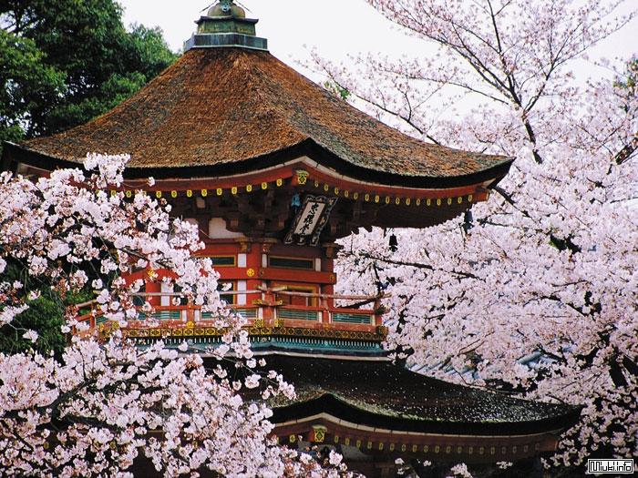 Японская пагода - башня сокровищ