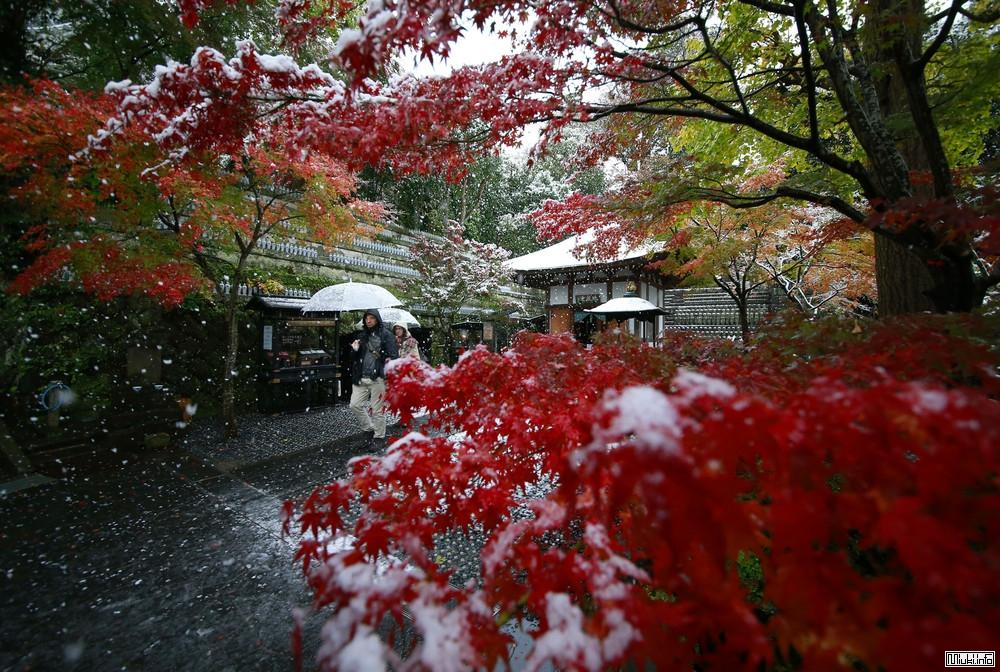 Снегопад в Японии (фото)