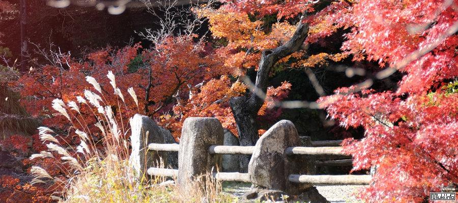 Несколько слов о географии и природе Японии