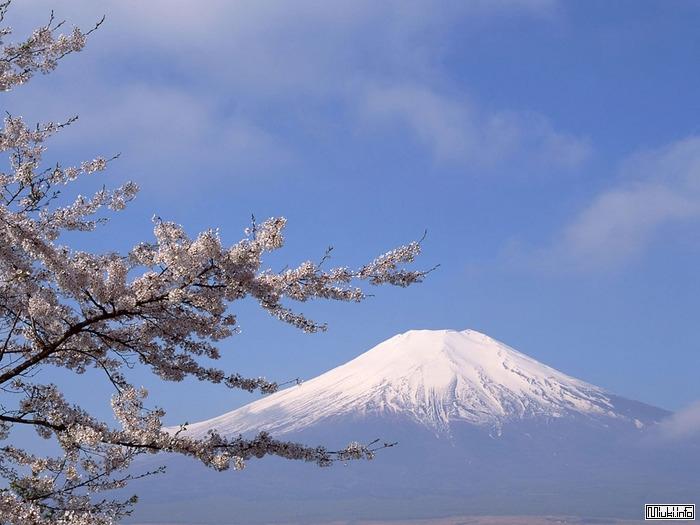 Что непременно стоит посмотреть гайдзину в Японии
