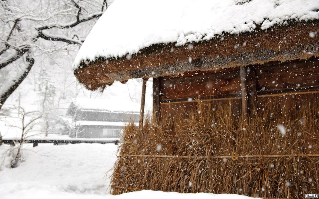 Минка (традиционный японский дом) и особенности современного японского жилища